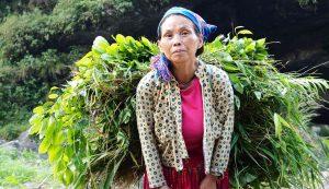 ethnic minority groups in ha giang vietnam